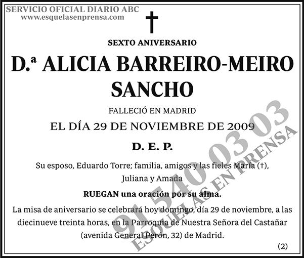 Alicia Barreiro-Meiro Sancho